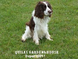 QUILES GARDEN&HOUSE